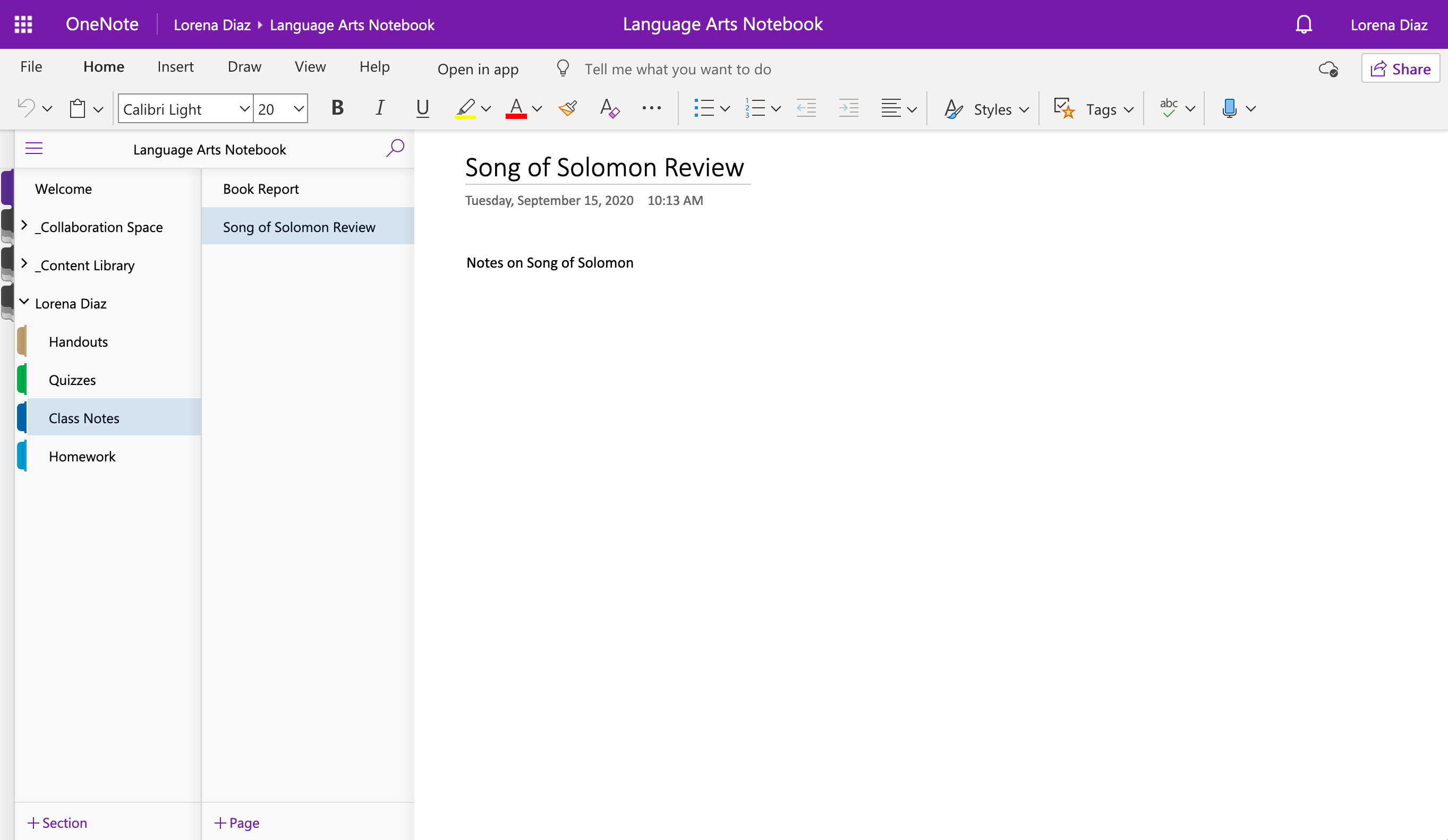 S03b_OneNote_Notes.png